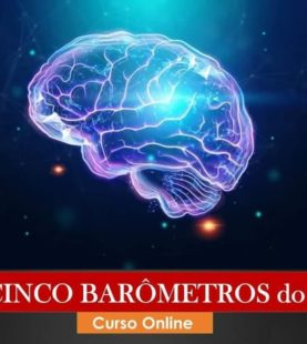 OS 5 BARÔMETROS DO BMT- (MÓDULO 6)