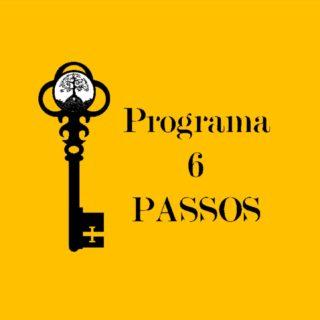 PROGRAMA 6 PASSOS- COMBO DOS 4 PROGRAMAS