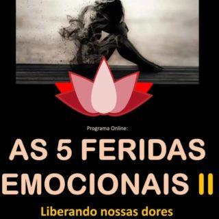 AS CINCO FERIDAS EMOCIONAIS: CURANDO NOSSAS DORES
